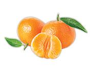 Mandarínky 1 kg